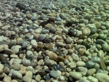 Free Stones On The Bank Of Black Sea Stock Photos - 9046383