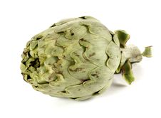 Free Artichoke Front Royalty Free Stock Photography - 9046417