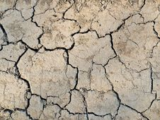 Free Cracked Earth Stock Photo - 9047230