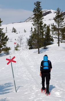 Person Walking In Snow With Trail Markers Stock Image