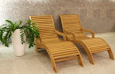 Free Two Sunbeds With Plant Stock Photography - 9047842