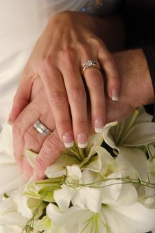 Free Wedding Rings Stock Images - 9048414