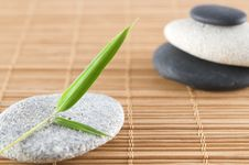 Free Bamboo Leaf And Stones Royalty Free Stock Photo - 9051155