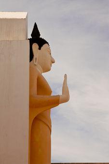 Free Standing Buddha Image Stock Photography - 9052772