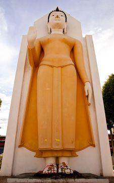 Free Standing Buddha Image Stock Photography - 9052822