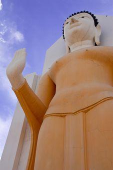 Free Standing Buddha Image Royalty Free Stock Image - 9052906