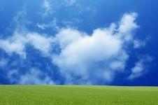 Free Green Landscape Stock Image - 9054661