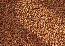 Free Buckwheat Groats Stock Photos - 9055853