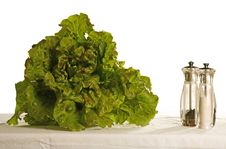 Free Fresh Salad Royalty Free Stock Photo - 9055955