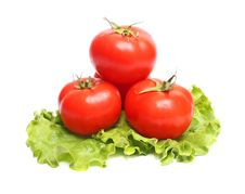 Red Tomatoes And Green Lettuce Royalty Free Stock Photo