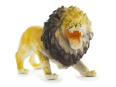 Free Lion Stock Photography - 9057672