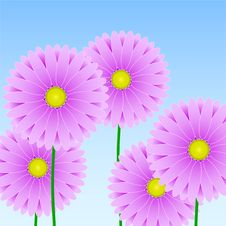 Free Floral Background Royalty Free Stock Photo - 9059835