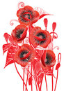 Free Bouquet Of Poppies Stock Image - 9060441