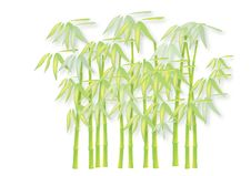 Free Bamboo Stock Photography - 9060002