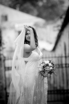 Free Bride Royalty Free Stock Photos - 9062508