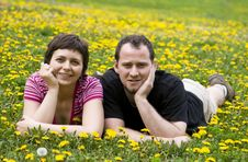 Free Couple Laying In A Meadow Royalty Free Stock Photos - 9064948