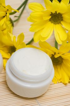 Free Cosmetic Moisturizing Cream Royalty Free Stock Image - 9065276