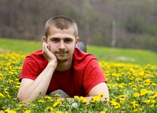 Handsome Young Man Laying In A Meadow Royalty Free Stock Images