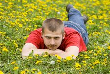 Handsome Young Man Laying In A Meadow Stock Images