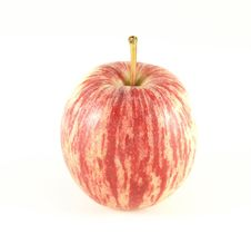 Free Red Gala Apple Stock Images - 9065644