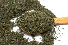 Free Spice Of Thyme Isolated Royalty Free Stock Images - 9066639