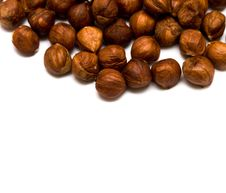 Free Many Hazelnuts Isolated Royalty Free Stock Images - 9066719
