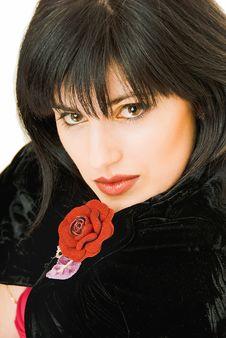 Free Beauty Brunette Stock Image - 9068691