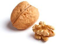Free Walnut On White Stock Image - 9068891