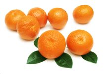 Free Tangerines. Stock Images - 9069424