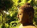 Free Buddha Statue In Forest Royalty Free Stock Photography - 9071847