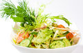 Free Vegetable Salad Stock Image - 9074841