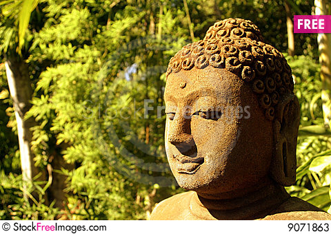 Free Buddha Statue In Forest Stock Photos - 9071863