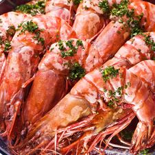 Free Shrimp Royalty Free Stock Images - 9070589