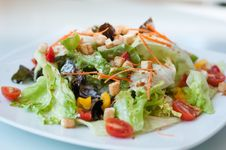 Free Salsa Salad Royalty Free Stock Photos - 9070728