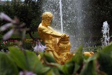 Fountain In The Petrodvoretz Garden Stock Image