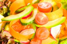 Free Vegetable Salad Stock Photos - 9074923