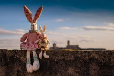 Free Sky, Rabits And Hares, Stock Photography Stock Images - 90799034