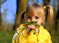 Little Girl And Wild Flowers Royalty Free Stock Image