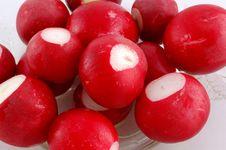 Free Red Garden Radish Stock Photo - 9081390