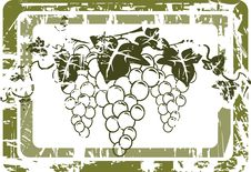 Grunge Grape Label Stock Images