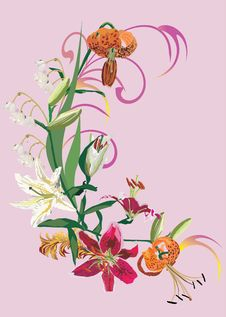 Free Decoration Of Different Lily Royalty Free Stock Photography - 9084837
