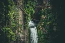 Free Waterfall In Jungle Royalty Free Stock Images - 90995429