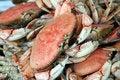 Free Fresh Crabs Stock Photo - 915210