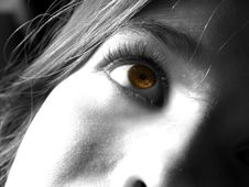 Free Brown Eyed Girl. Stock Images - 910024