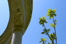 Free Columns Stock Photo - 911080