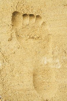 Free Trace Of A Female Foot On Sand Stock Image - 912651