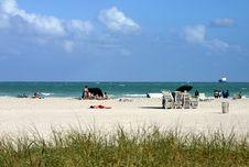 Free Beach Royalty Free Stock Photography - 913007