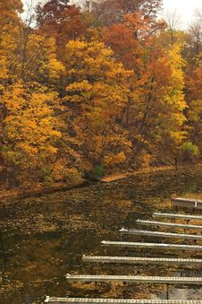 Free Empty Harbour In Fall Royalty Free Stock Image - 913306