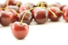 Free Cherries Stock Photos - 914123