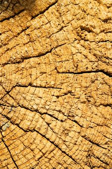 Free Fragment Of The Old Wooden House Stock Image - 916981